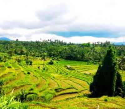 voyage à bali pour  randonnée au  village kastala  au pied du mont agung -balilabelle