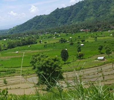 balade au village de sidemen avec de belles collines et rizières
