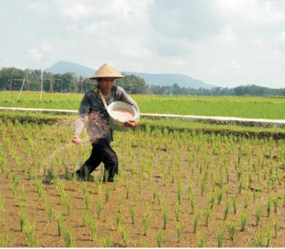 balade à pied dans le très beau village de Kastala est idéale pour la randonnée dans les rizières
