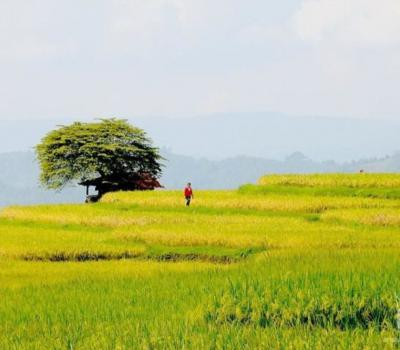 randonnée  au village de kastala @)2021