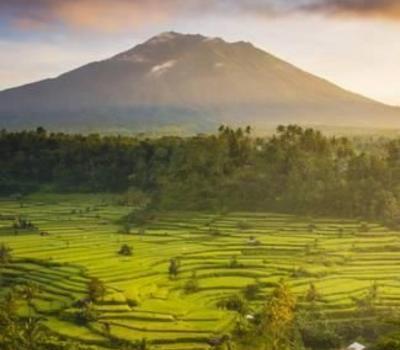 bali randonnée dans la zone de Sidemen est célèbre pour les rizierres en terrrasses