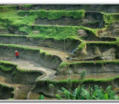 très belle randonnée dans le village de belimbing et visite tanah lot-balilabelle