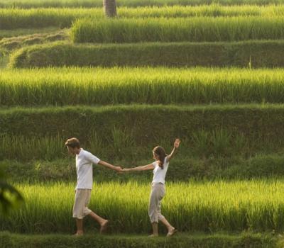 très jolies randonnées au village d'ubud ,balilabelle
