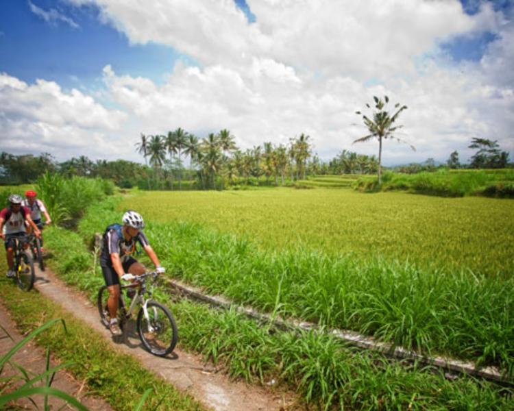 voyage à bali Un tour de vélo très amusant