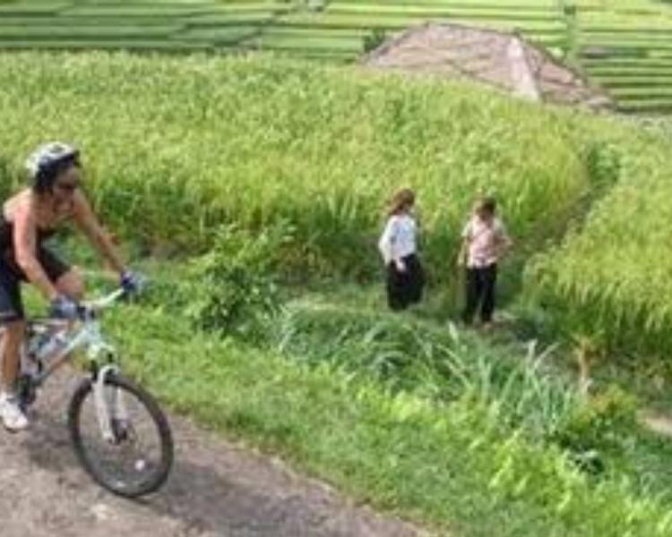 faire la balade  à vélo ,balilabelle