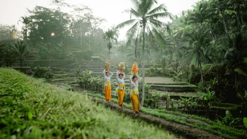 2 top voyages prives en circuits avec un guide francophone balinais-balilabelle