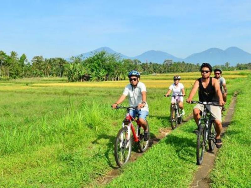 faire des activités sportives telles que faire du vélo, du rafting, etc. avec balilabelle