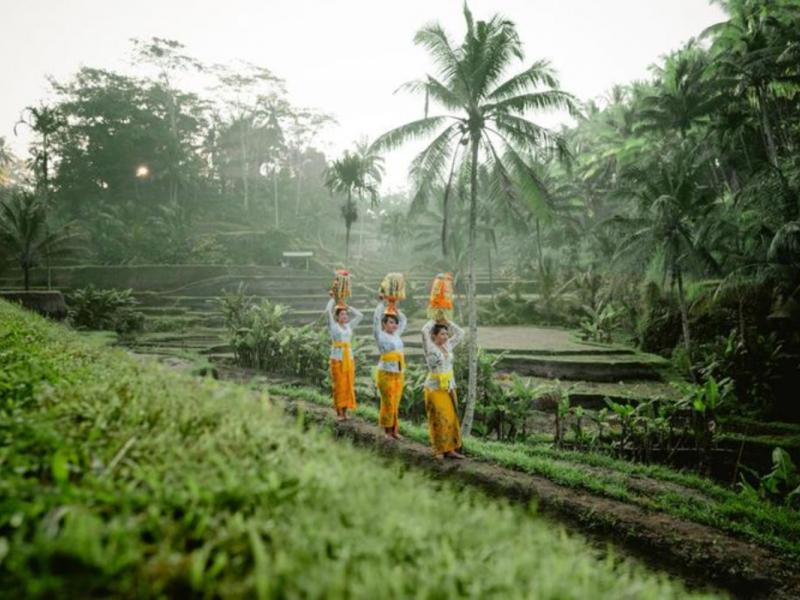 circuits privés 11 jours et 10 nuits  a bali avec chauffeur guide francophone balinais-balilabelle