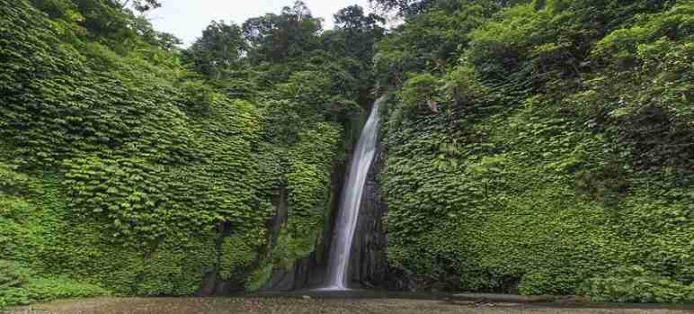 voyage à bali avec balilabelle Munduk – trekking