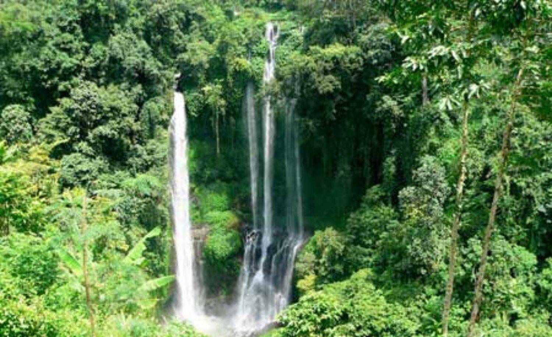 munduk randonnée-cascade -du lac tamblingan2021