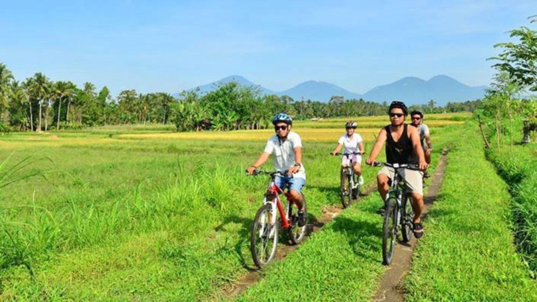jatiluwih balade à pied et vélo à bali (vtt) offrant une vue panoramique sur les célèbres rizières