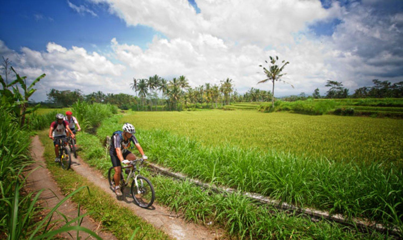 randonnée dans les villages avec des rizierres en terrasses de jatiluwih