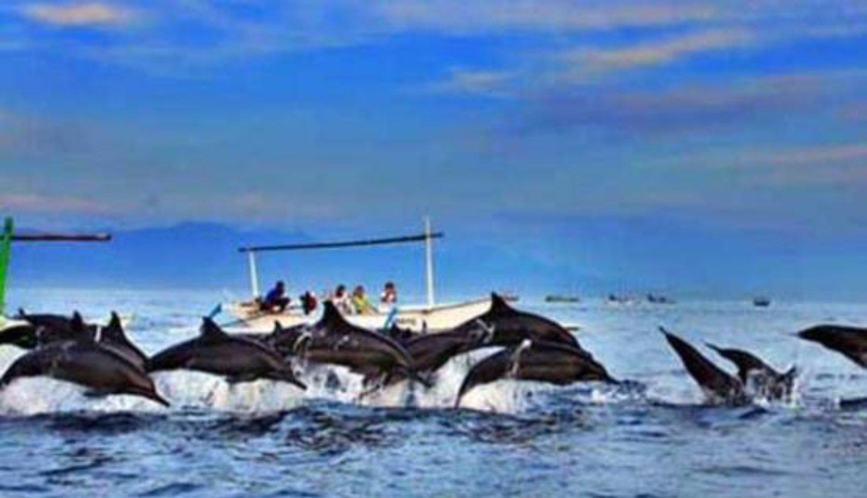 voyage à bali excurstion (visite des dauphins sur la plage de lovina) -balilabelle