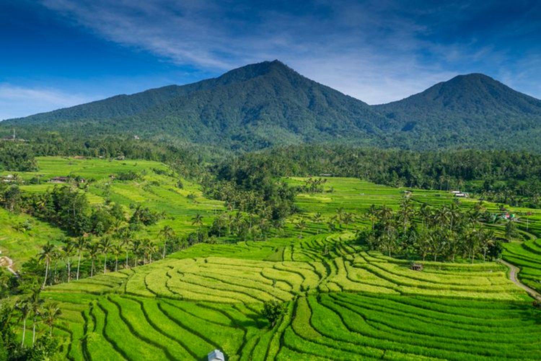 voyage à bali Jatiluwih Bali est la meilleure attraction d'attraction de rizières en terrasses -bali