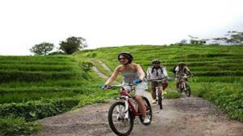 randonnée  à Jatiluwih  est la meilleur d'attraction de rizières en terrasses de bali