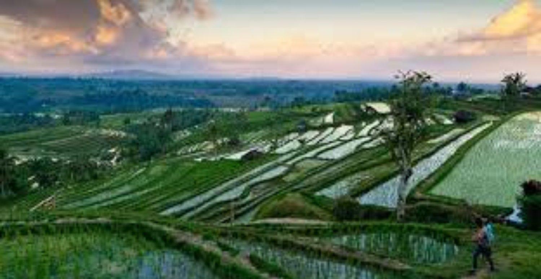 randonnée à bali jatiluwih , L'eau chaude angseri et le temple de Tanah lot
