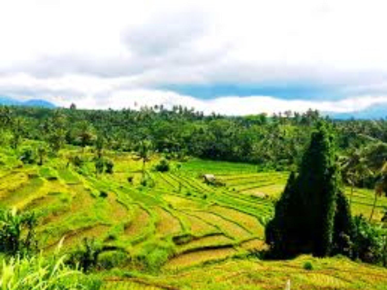 top randonnée dans le village de kastala, balilabelle