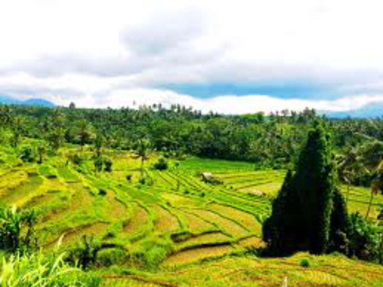 faire la balade  dans la région de Kastala Karangasem au pied de la montagne Agung
