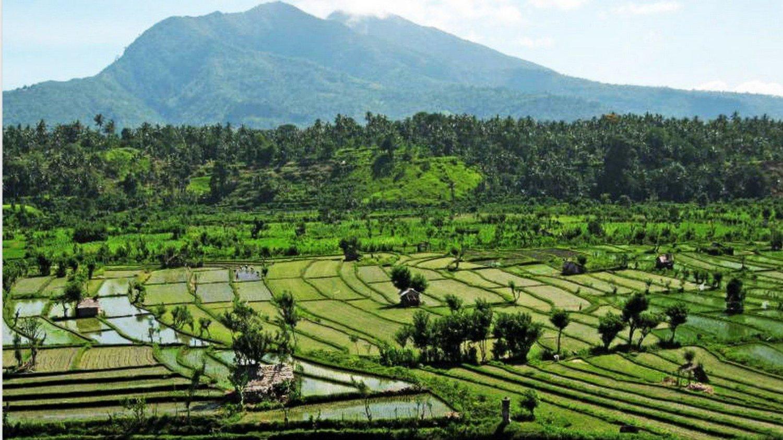 Conseils de randonnée dans le village de Kastala avec vue sur le mont Agung et les rizières