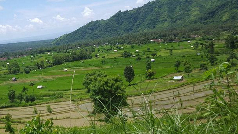 une promenade dans les rizières du village de Kastala