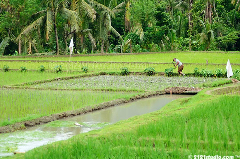 voyage à bali  la beauté du village de kastala  randonnee et Prasi White Sand(la plage du sable blan