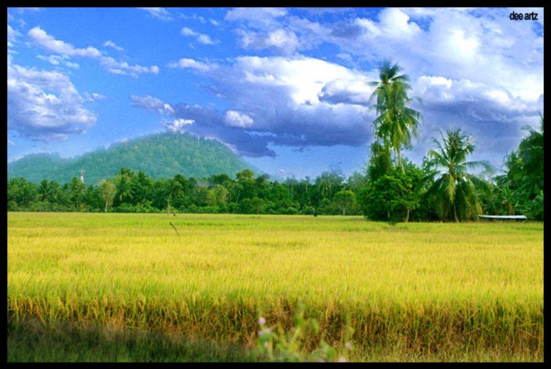 La randonnée dans le village Kastala  avec les rizières