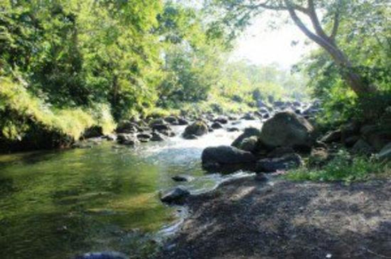Trekking a Sidemen est célèbre pour sa beauté naturelle a la basse du mont agung 2020
