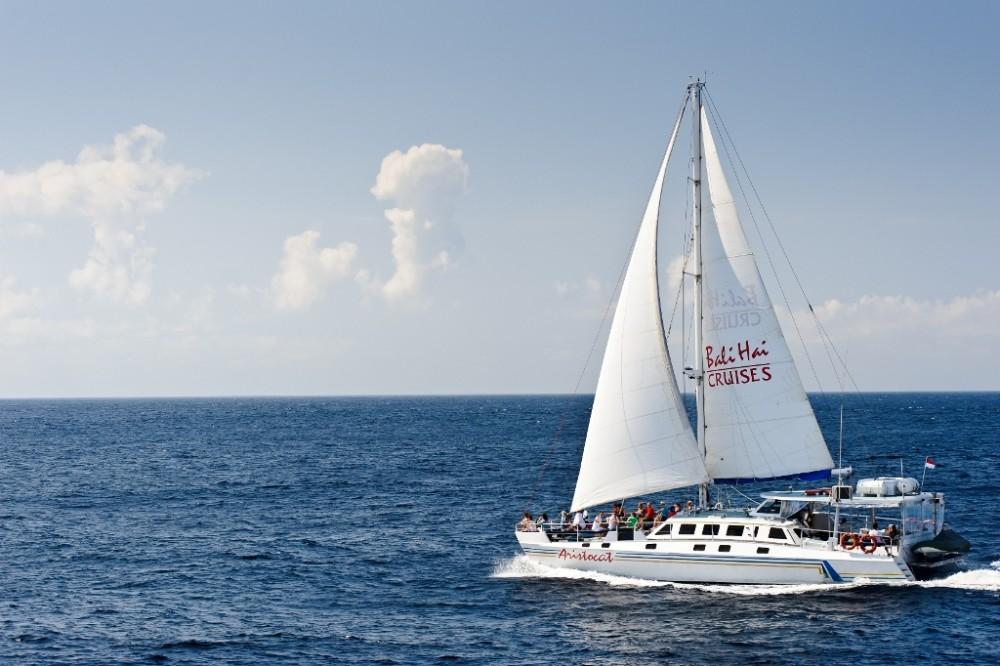 Aristocat Island Discovery Cruise 7