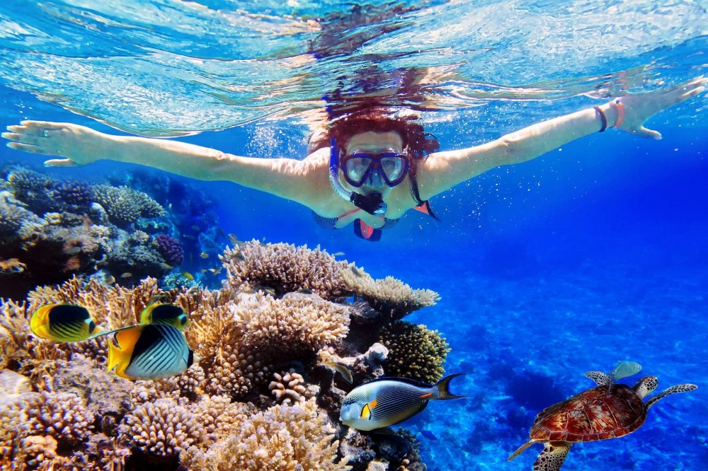 Menjangan Snorkeling 5